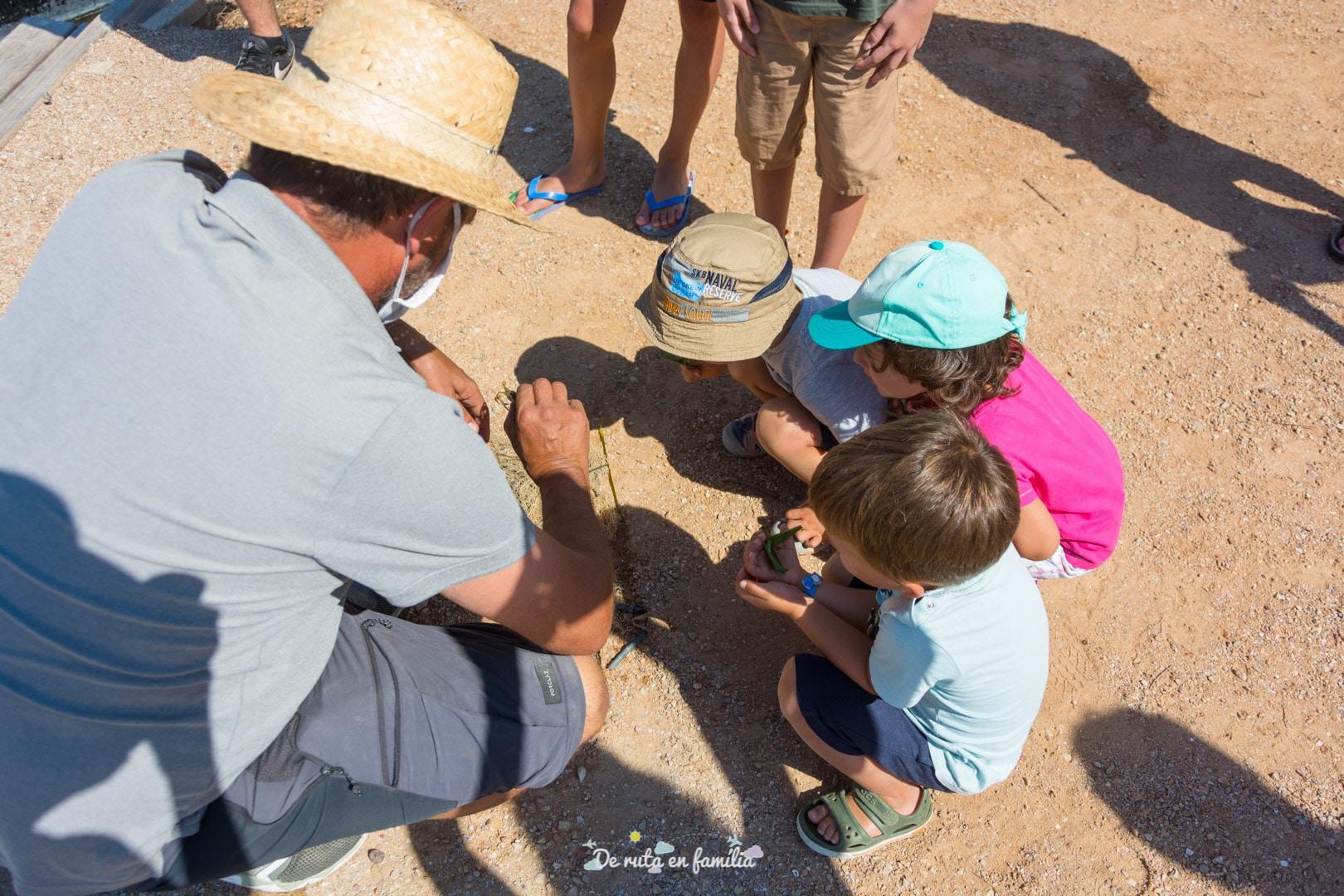 delta de l'ebre amb nens mon natura