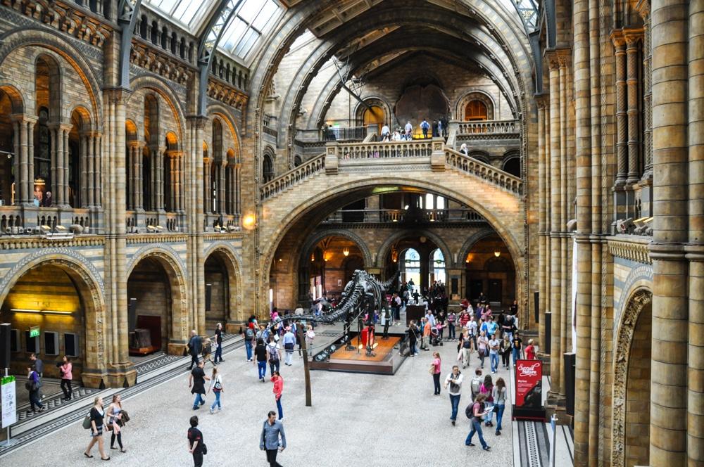 Escapada a Londres. Un matí al Museu d'Història Natural