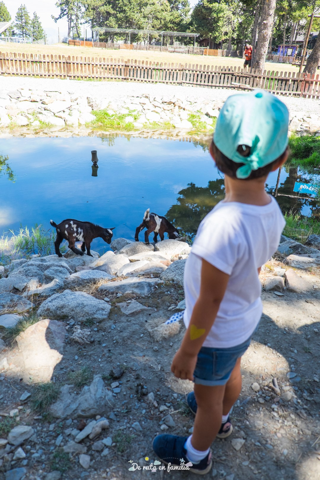 naturlandia parc d'animals