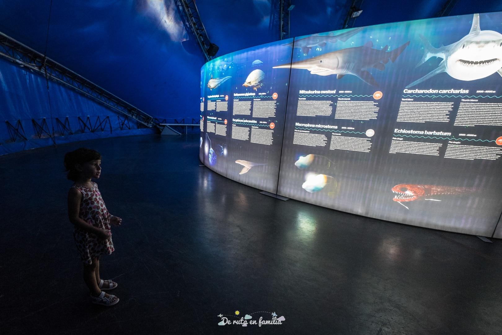 Exposició Criatures submarines al Poble Espanyol de Barcelona