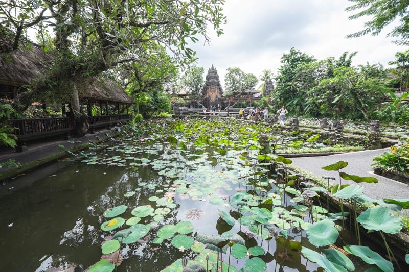 Les 10 coses que no pots deixar de visitar y fer a Ubud, la capital de Bali
