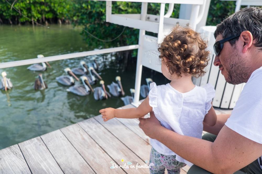 Ruta de 2 dies pels Cayos de Florida