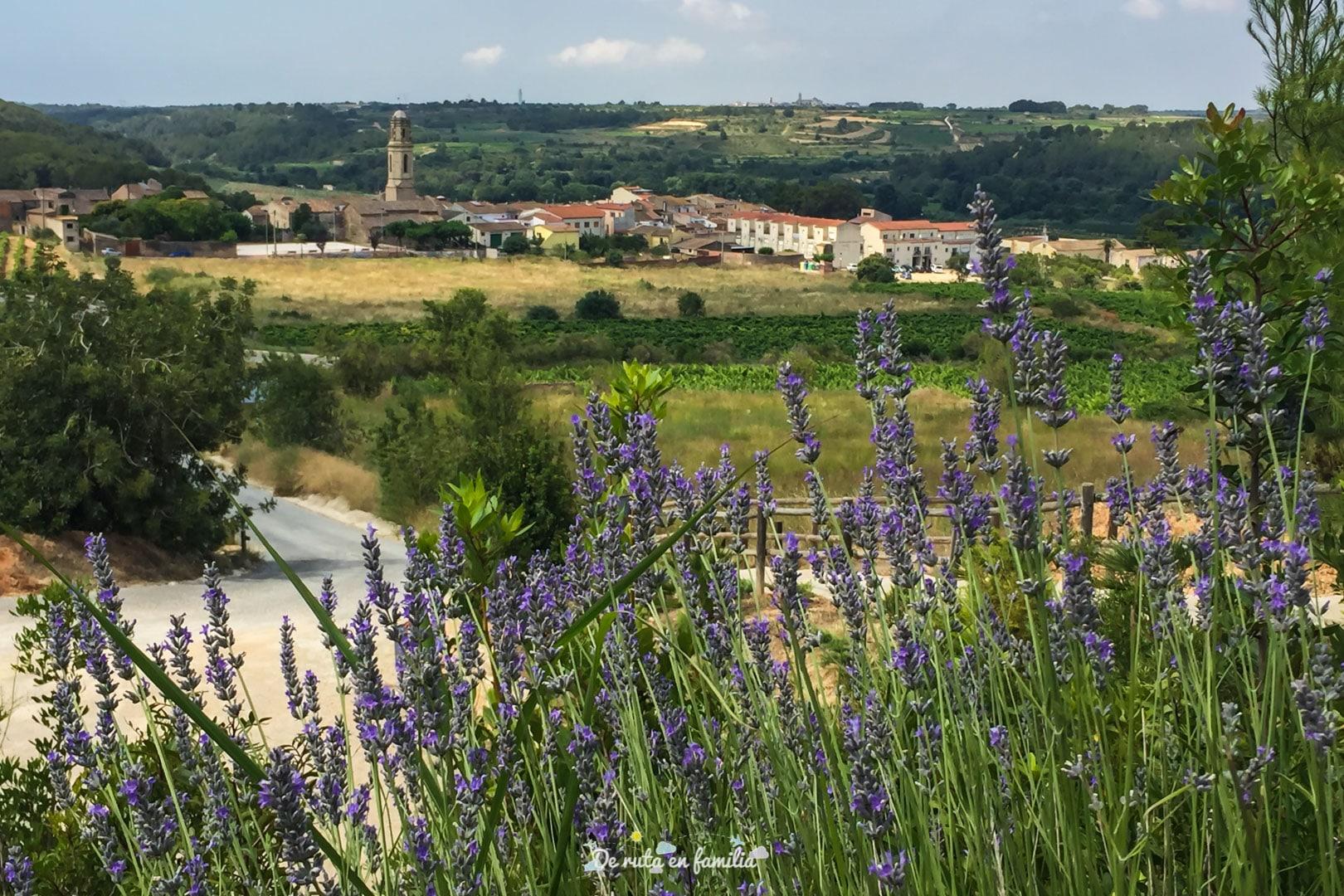 el poble de Montferri