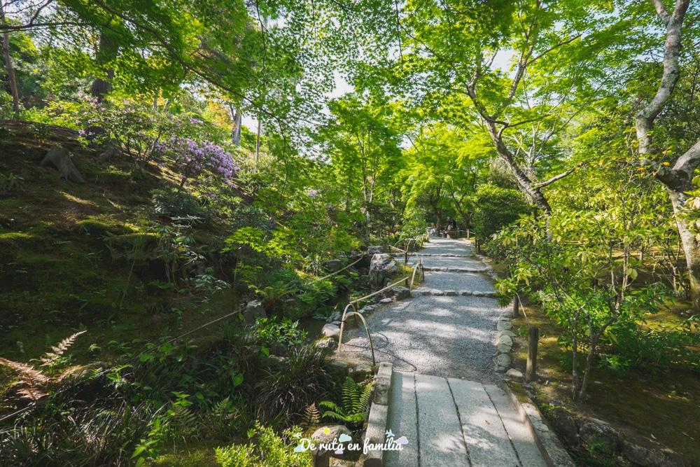 visitar Kyoto bosc de bambú Arashiyama