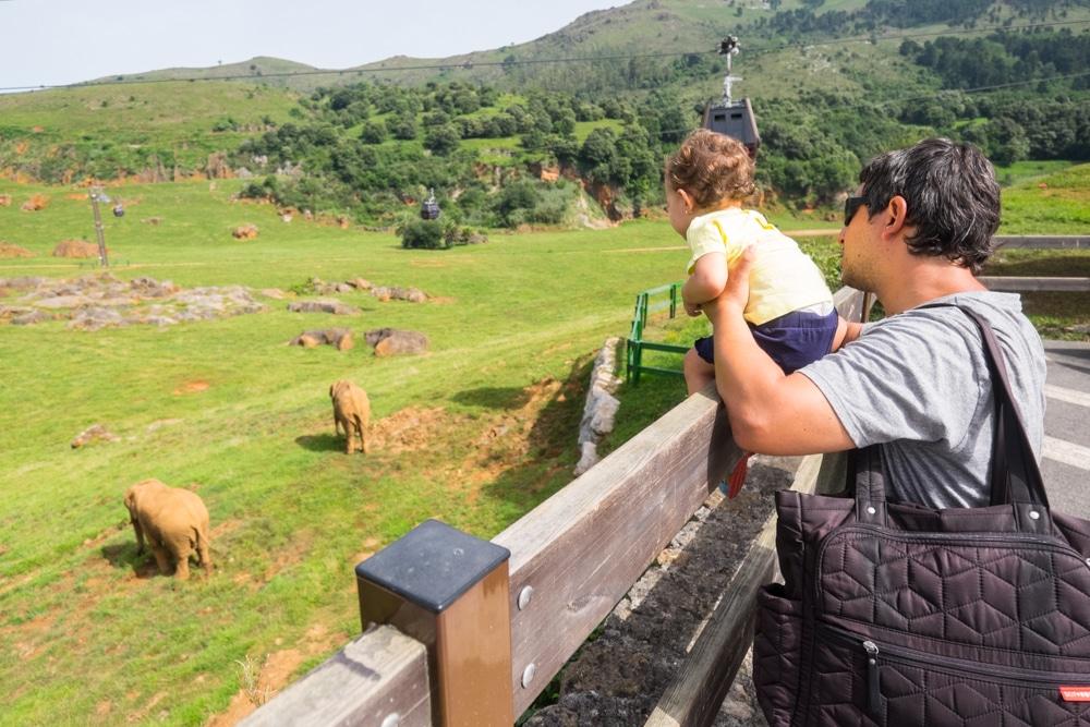 Visitar el Parc de Cabárceno amb un bebè